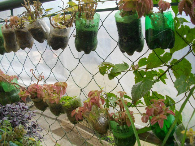 45 Different Ways to Use Plastic Bottles Into Sustainable DIY Crafts usefuldiyprojects.com decor ideas (22)