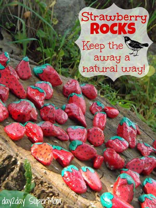 26 DIY Rock Garden Decorating Ideas of Immense Beauty usefuldiyprojects (11)