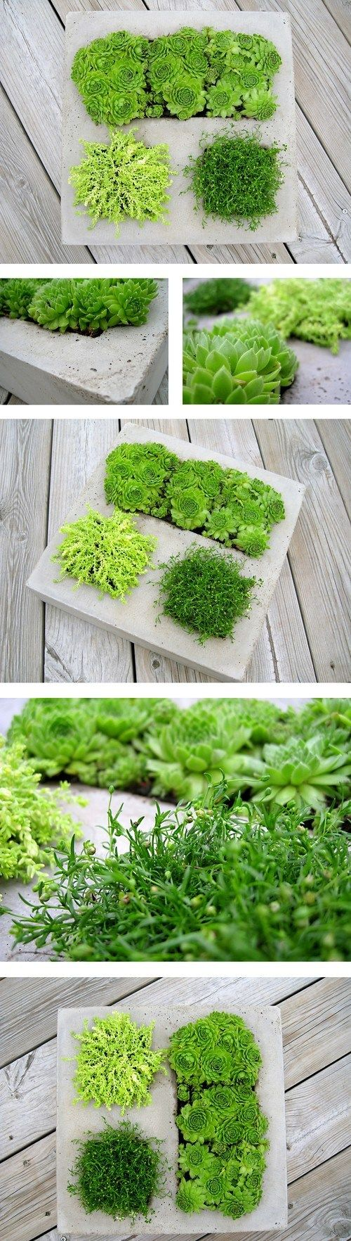 19 Beautiful DIY Cement Crafts To Add Diversity To Your Interior Decor-usefuldiyprojects (13)