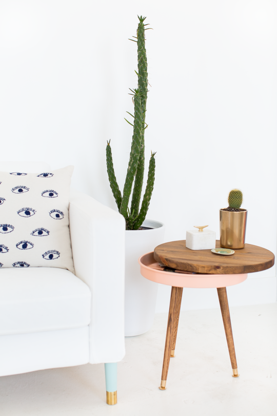 vase with cactus and couch
