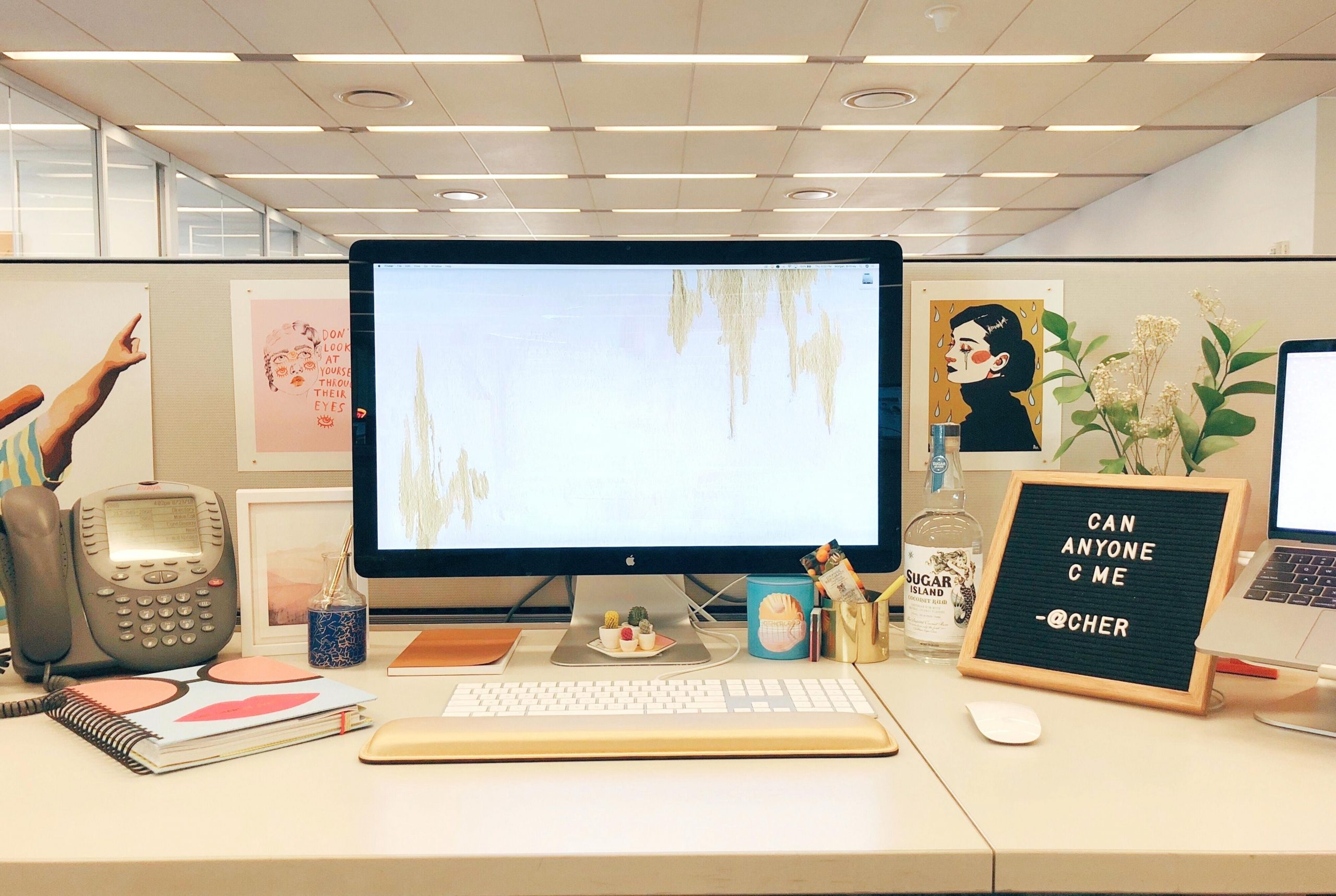 Best Cubicle Decor Ideas In How To Decorate Your Cubicle Work Cubicle Decorating Decorating Your Work Cubicle For Halloween Useful Diy Projects,How To Design An Office Chair