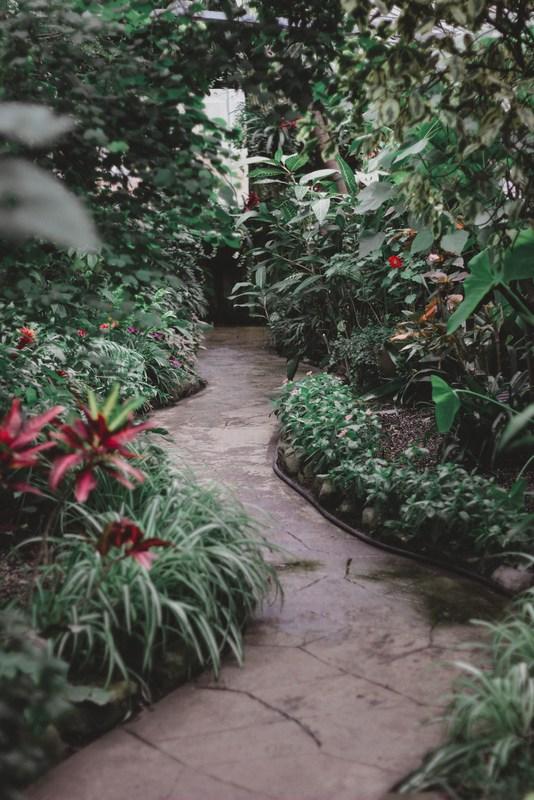 garden path tips