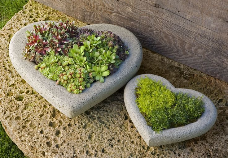 A concrete heart holding on to nature