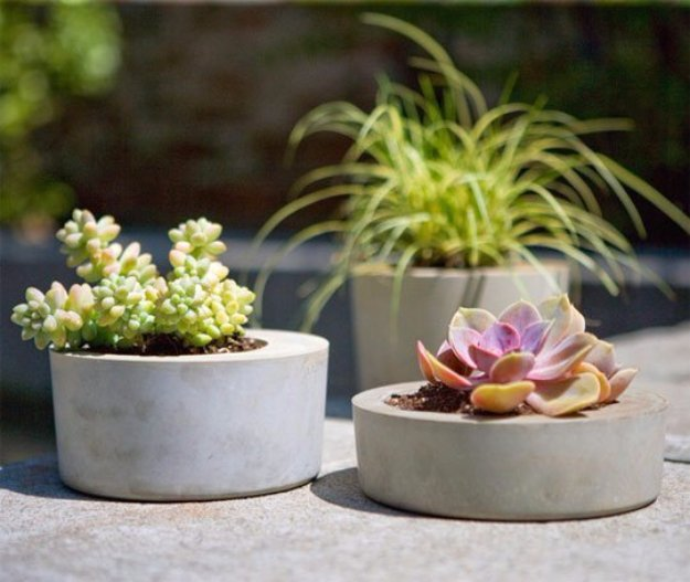 Succulent holders from concrete