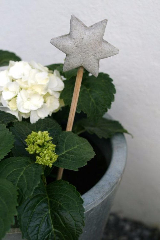 Cute star flower pot tag