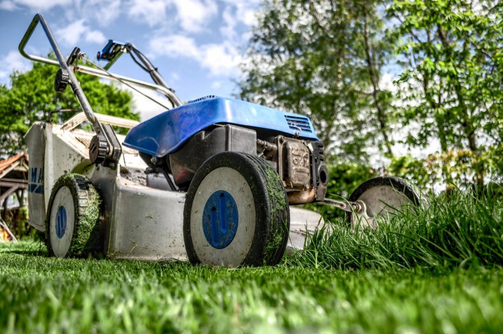 The Maintenance of a Natural Lawn